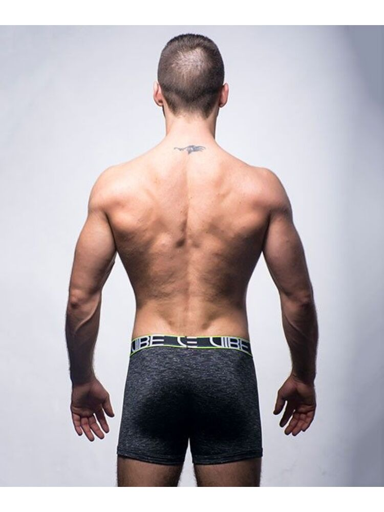 Andrew Christian Vibe Sports & Workout Tagless prailginti šortukai
